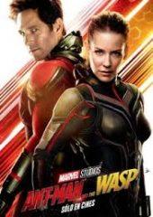 Karınca Adam ve Eşek Arısı – Ant-Man ve Wasp 2018