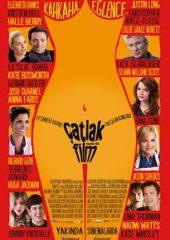 Çatlak Film – 43 2013