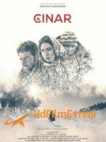 Çınar Yerli Film 2019 Sorunsuz