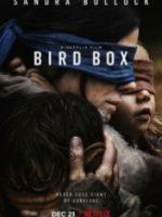 Kafes – Bird Box 2018
