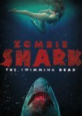 Köpekbalığı Adası – Zombie Shark