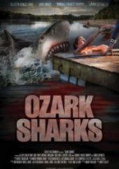 Köpekbalığı Dehşeti – Ozark Sharks 2016