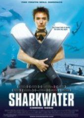 Köpekbalığı Suyu – Sharkwater 2006