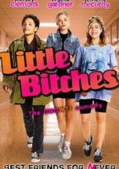 Küçük Tilkiler – Little Bitches izle Türkçe dublajlı