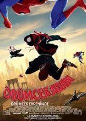 Örümcek-Adam: Örümcek Evreninde 2018 TR Dublaj