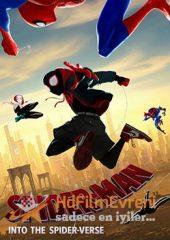 Spider-Man Into the Spider Verse 2018 – Örümcek Adam Örümcek Evreninde